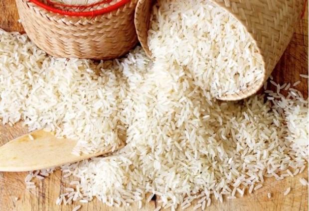 越南大米占菲律宾大米进口总量的84% hinh anh 1