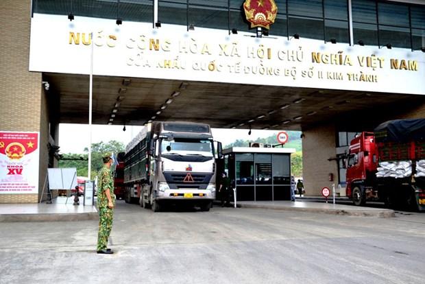 每天通过老街口岸出口中国的北江荔枝超过500吨 hinh anh 1