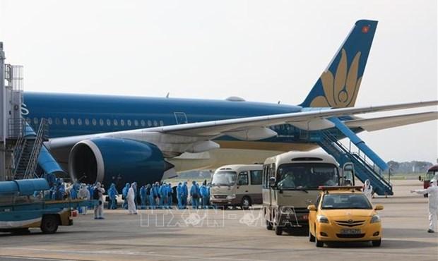 继续执行通过新山一和内排两个国际机场入境的客运航班 hinh anh 1