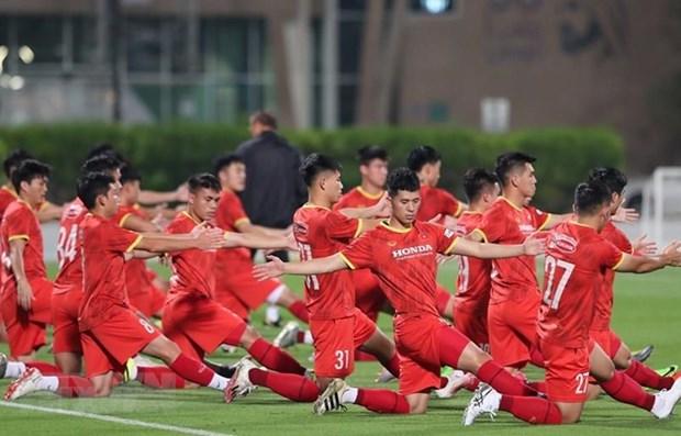 越南与阿联酋展开深度合作 推动足球发展 hinh anh 1