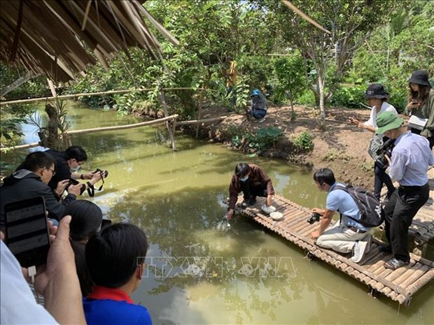 Nguoi Viet Nam di du lich Viet Nam (Bai 1) hinh anh 3