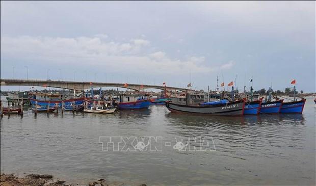 Ung pho voi bao so 5: Quang Tri di doi, so tan tren 94.000 nguoi dan hinh anh 1