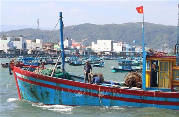 Ngu dan Phu Yen trung dam mua ruoc trong chuyen bien dau nam hinh anh 2