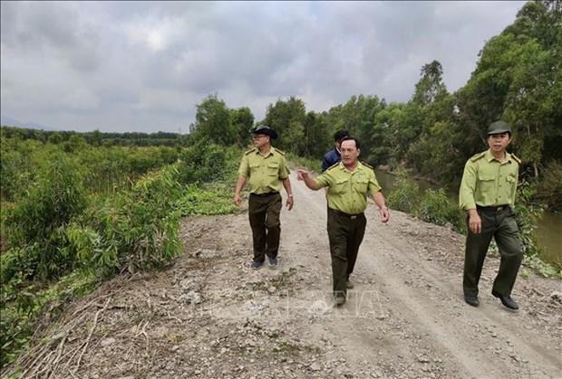 An Giang co gan 7.300 ha rung de xay ra chay trong mua kho han hinh anh 5