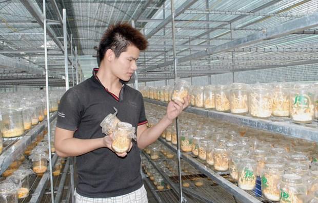 Lam Dong cong nhan them 8 san pham OCOP dot 1 nam 2021 hinh anh 1