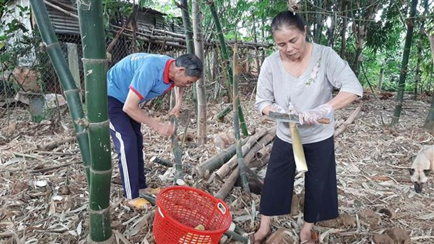 Nang cao chat luong san pham dac trung Tay Nguyen hinh anh 1