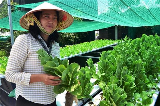 Chi Nguyen Thi Lan khoi nghiep thanh cong voi mo hinh nuoi ca cuong hinh anh 3