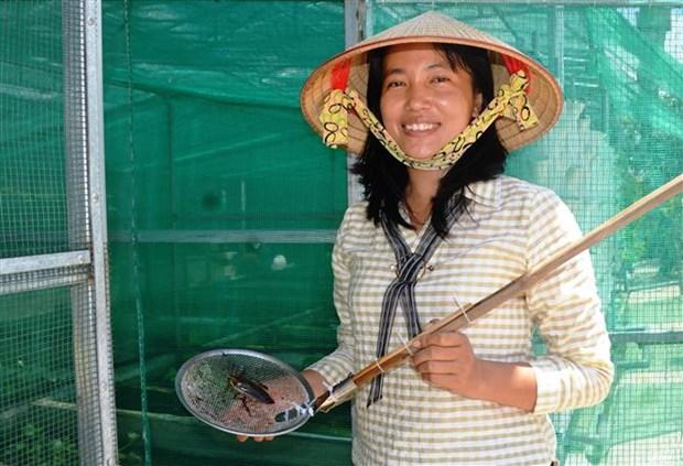 Chi Nguyen Thi Lan khoi nghiep thanh cong voi mo hinh nuoi ca cuong hinh anh 1