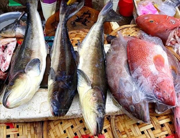 Du lich Ninh Thuan - dau an tu vung dat nhieu nang gio (Bai cuoi) hinh anh 3