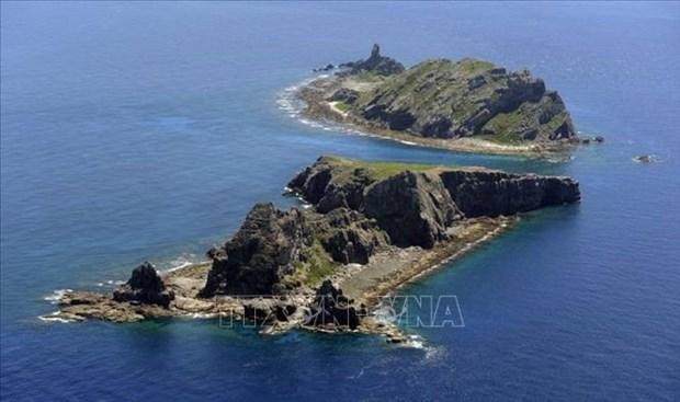 日本反对中国在华东海和东海采取使紧张局势升级的行为 hinh anh 1
