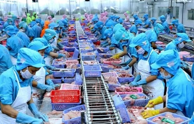 越南致力于实现生产和出口双丰收的目标 hinh anh 2