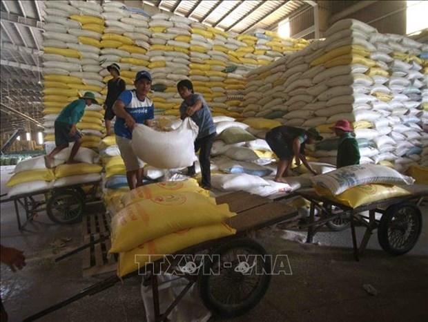 越南农产品价格呈现上涨趋势 hinh anh 1