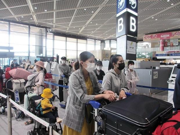 越南将340余名公民从日本接回国 hinh anh 1