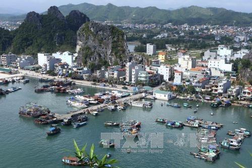 云屯——东北地区经济发展的新动力 hinh anh 2