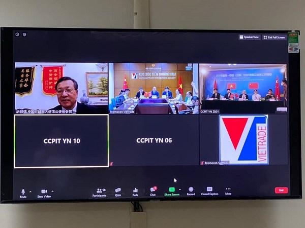 2020年越中农业与食品企业对接会通过在线会议平台举办 hinh anh 1