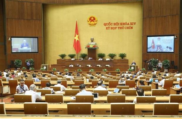 越南第十四届国会第九次会议:提交国会2021-2030年少数民族地区和山区经济社会发展国家目标计划 hinh anh 1
