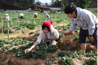 农耕文化旅游——林同省旅游业 新发展方向 hinh anh 9