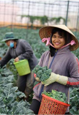 农耕文化旅游——林同省旅游业 新发展方向 hinh anh 10