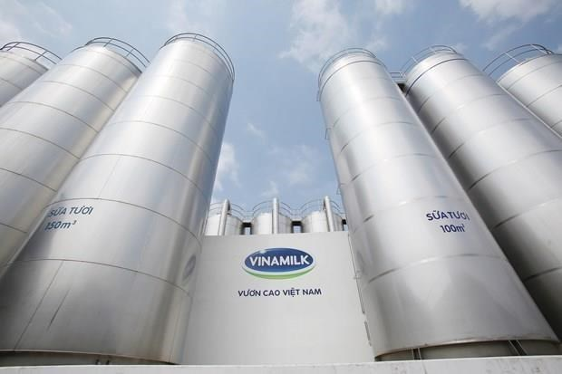 Vinamilk扩大奶制品在美国的市场份额 hinh anh 1
