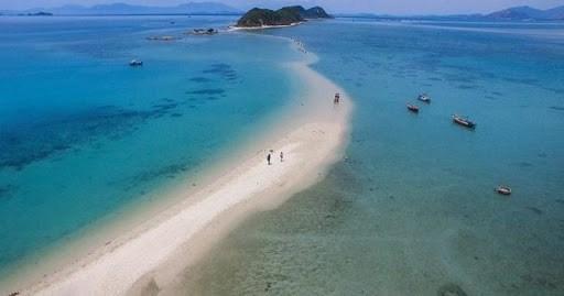 积极响应世界海洋日和2020年越南海洋岛屿周 hinh anh 1