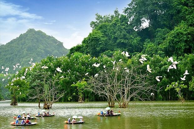 竭尽全力促进旅游业复苏 推广越南安全旅游目的地的形象 hinh anh 1