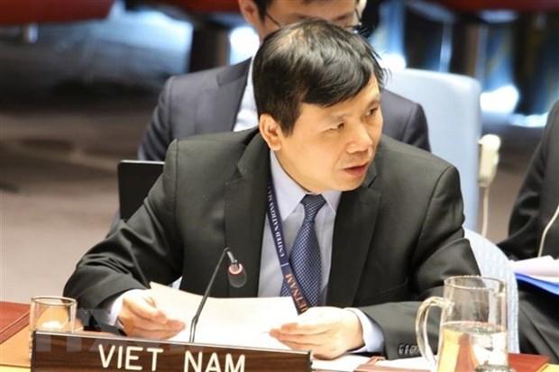 越南主持召开联合国安理会有关国际法院工作组会议 hinh anh 1