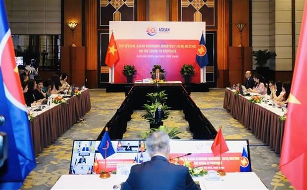东盟与中日韩经济部长会议通过联合宣言 hinh anh 1