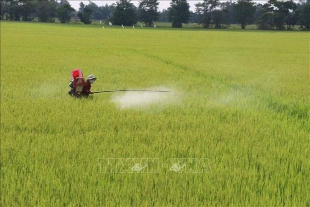 越南农业力争进入世界农业发达国家前15行列 hinh anh 1