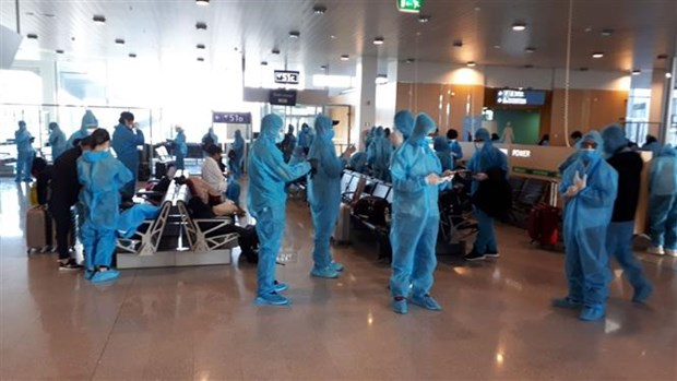 越南将300多名公民从瑞典和芬兰接回国 hinh anh 2