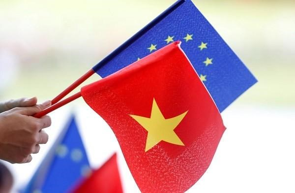 越南国会批准EVFTA和EVIPA 越南融入国际社会进程的重要步伐 hinh anh 2