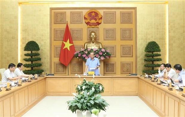 政府副总理张和平:坚决使无法重组的项目破产 减少对国家的损失 hinh anh 1