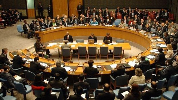 越南支持有关国家在起诉和审判严重国际罪行方面承担主要责任 hinh anh 1