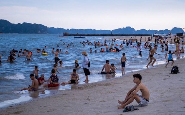 彭博:越南在恢复旅游方面取得显著成果 hinh anh 1