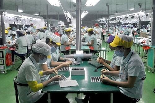 越南企业在疫情中主动寻找商机 hinh anh 1