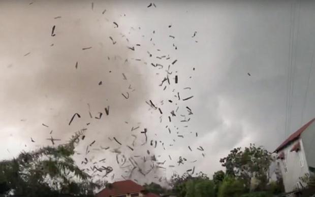 飓风致永福省一木业厂房倒塌-3人死亡20人受伤 hinh anh 1