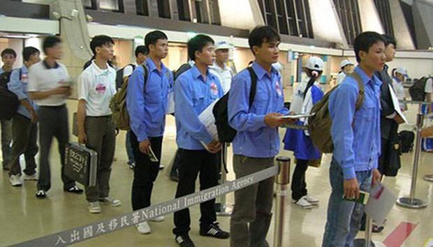 国际劳工组织承诺协助越南促进劳工移民安全 hinh anh 1