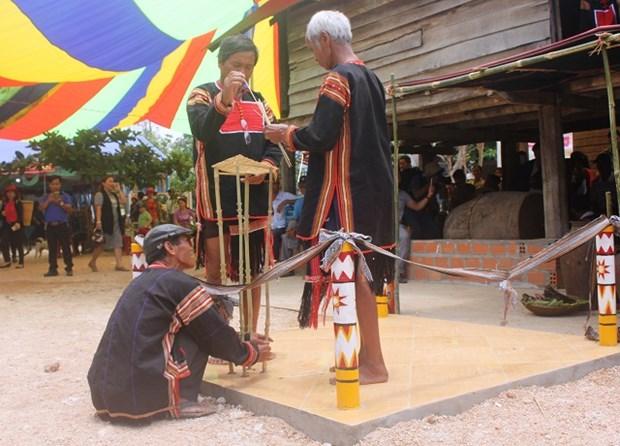 嘉莱族同胞富有特色的求雨仪式 hinh anh 2