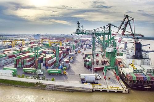 越南政府颁布有关引导实施《伊斯坦布尔公约》暂准进出口制度的议定 hinh anh 1