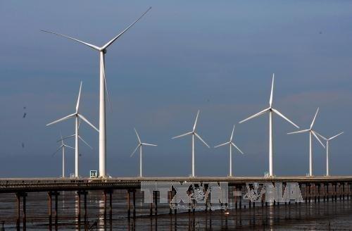 丹麦协助越南发展海上风电 hinh anh 1