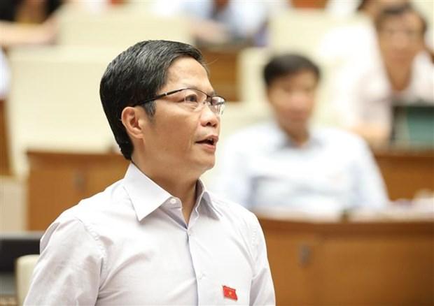 越南有望成为2020年世界最大大米出口国 hinh anh 1