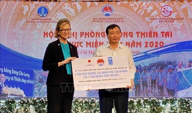 日本与UNDP协助受疫情影响的越南南部地区困难群众 hinh anh 1