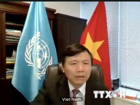 越南对UNITAD恐怖组织罪行追究调查活动表示欢迎 hinh anh 2