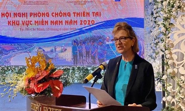 日本与UNDP协助受疫情影响的越南南部地区困难群众 hinh anh 2
