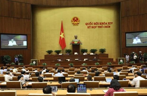 国会表决通过四部法律并对两部法律草案提出意见 hinh anh 1
