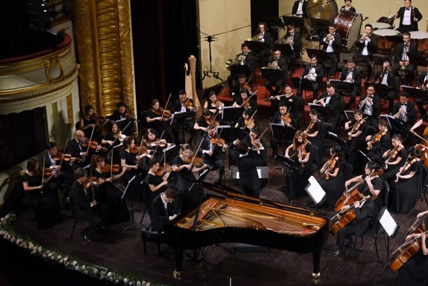 疫情后河内首场室内交响音乐会举行在即 hinh anh 1