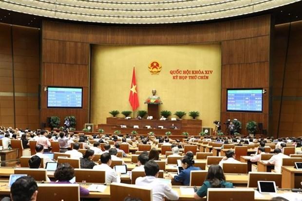 越南第十四届国会第九次会议:讨论两部法案 hinh anh 1