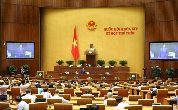 越南第十四届国会第九次会议通过两项决议和两部法律 hinh anh 2