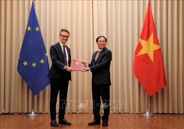 越南代表向欧盟驻河内代表团递交EVFTA和EVIPA的批准文件 hinh anh 1