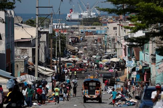 越南与联合国安理会:越南、印度尼西亚支持海地政府实现宪法改革 hinh anh 1