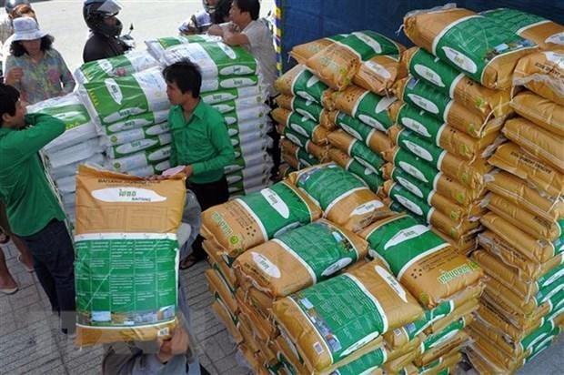 2020年柬埔寨农产品出口量可达500万吨 hinh anh 1